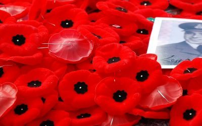 But What Does the Poppy Do?