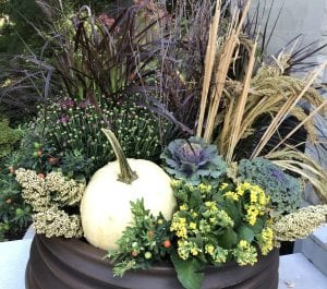 Fall in Love with Autumn Planters this Season