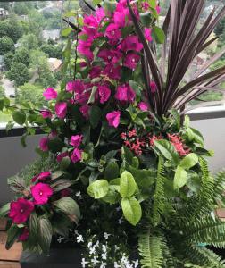 pink planter