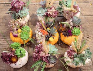 Thanksgiving Holiday Decor! strawflowers, succulents, antique hydrangeas, Chinese lanterns, wheat, Gomphrena, and viburnum berries