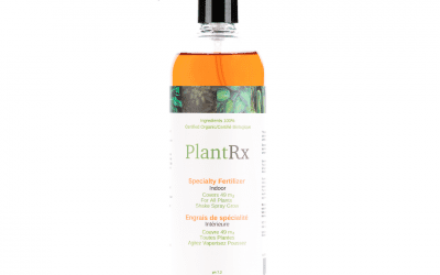 Plant Rx Plant Fortifier Spray