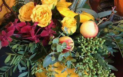 It's Fall At Flowers Talk Tivoli
