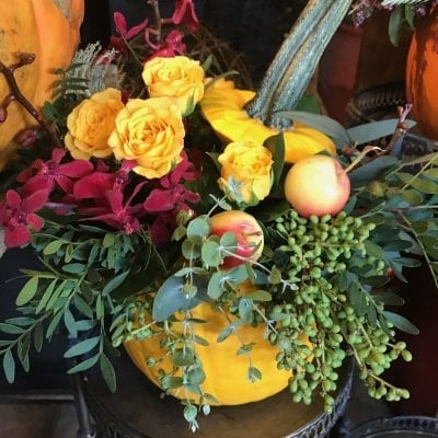 It's Fall At Flowers Talk Tivoli