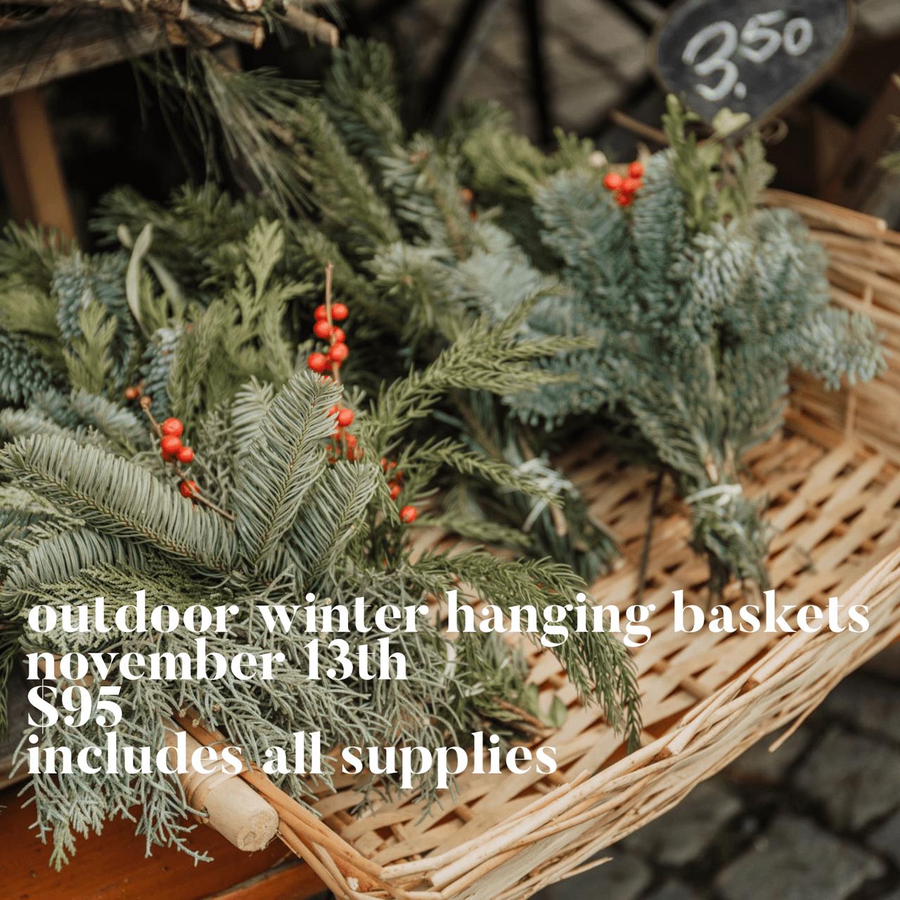 Outdoor-Winter-Hanging-Basket-Nov-13-Square