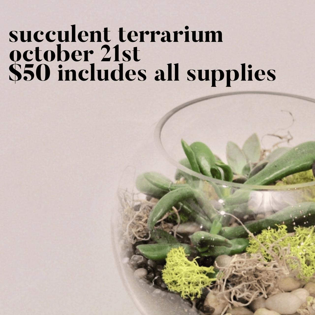 fall-succulent-workshop-2020